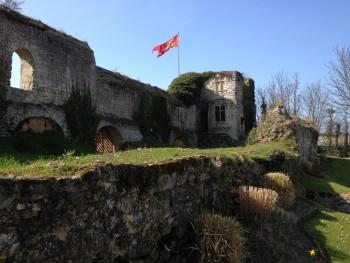 Ruines_du_château_ducal